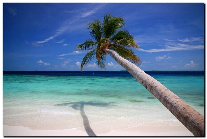 filitheyo island resort malediven reiseberichte. Black Bedroom Furniture Sets. Home Design Ideas